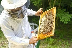 Zoznam včelárov na odchyt rojov pre rok 2018